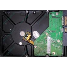 Б/У жёсткий диск 500Gb Western Digital WD5000AVVS (WD AV-GP 500 GB) 5400 rpm SATA (Волгоград)