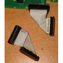 6017B0045701 Шлейф 24 pin для Intel C74974-401 T0043401-B01 корпуса SR2400 (Волгоград)