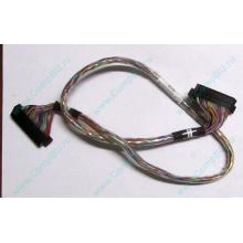 """6017B0045301 в Волгограде, 68pin SCSI кабель 26.5"""" / 57cm для корзины HDD Intel SR2400 (Волгоград)"""