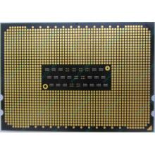 AMD Opteron 6128 OS6128WKT8EGO (Волгоград)